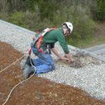 Ein Mitarbeiter der Boehi + Wirz AG sichert sich bei den Dachunterhaltsarbeiten an der Absturzsicherung.